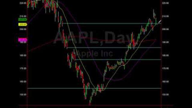 Market Action Alerts: Trades, Levels, Targets