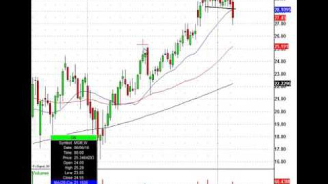 This Leading Casino Stock Plunges, Now Find The Institutional Trade Level